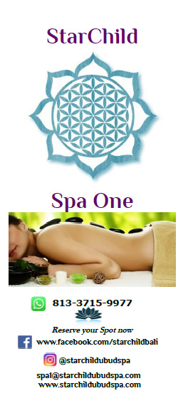 Download Spa1 Brochure!